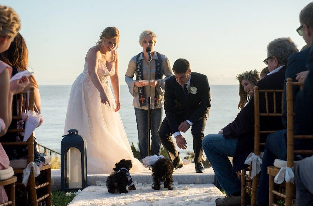 Amy schumer, Chris Fischer, Jennifer Lawrence, Jennifer Aniston, Jake Gyllenhaal, Jerry Seinfeld, Chelsea Handler, Larry David , wedding, Malibu, secret wedding