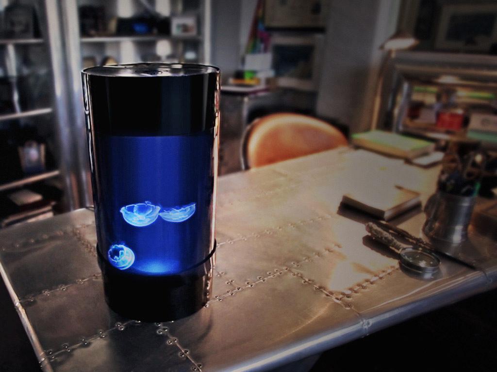 jellyfish cylinder nano