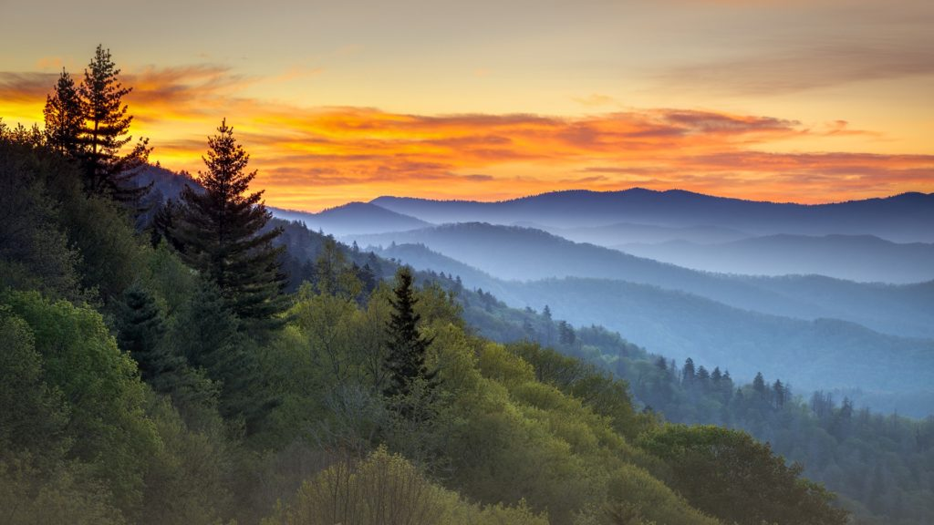 Great Smoky Mountain Park