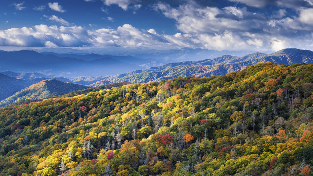 Great Smoky Mountain Park